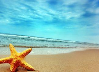 ¿Cuáles son los mejores destinos turísticos?