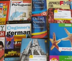 Diccionarios en varios idiomas