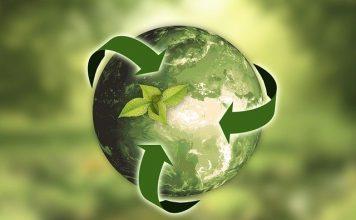 5 claves para convertirse en una oficina Eco-Friendly