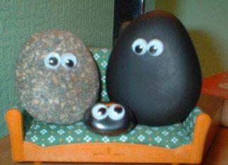 mascotas piedra